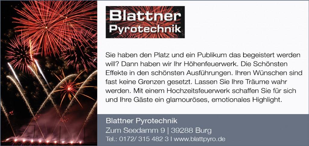 Pyroblattner2020